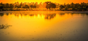 Landscapes of Shallow lakes and trees with the sun set Stock Image