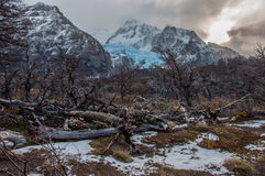 Landscapes of South Argentina, in the Fitz Roy trail Royalty Free Stock Photography