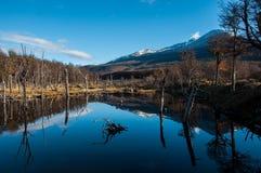 Landscapes of Tierra del Fuego, South Argentina Stock Photos