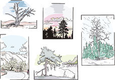 Landscapes with trees Royalty Free Stock Photography