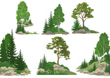 Landscapes with Trees and Rocks Royalty Free Stock Photography