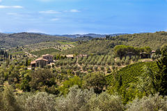 Landscapes of Tuscany in Radda Chianti. Famous Tuscany vineyards on Radda chianti royalty free stock images