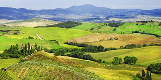 landscapes of Tuscany, val d'Orcia Royalty Free Stock Photos
