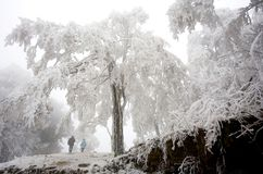 Landscapes in winter. Landscapes of Guizhou country in winter Royalty Free Stock Images