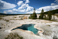 Landscapes of yellow stone national park Stock Images
