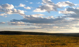 Landscapes of yellow stone national park Stock Photos