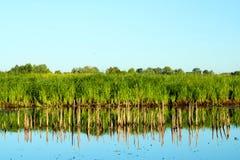 Landscapesee Lizenzfreies Stockbild