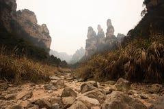 Landscapesikt av tien som är mansan på zhangjiajie Arkivfoton