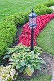 Landscaping в парке Стоковые Изображения