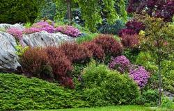 landscaping горного склона стоковая фотография rf
