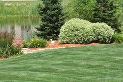 landscaping задворк Стоковые Фотографии RF