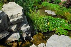 landscaping пруд Стоковая Фотография
