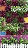 landscaping сада Стоковое Изображение