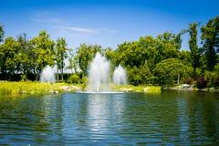 landscaping сада путь сада Красивейшая задняя часть Стоковая Фотография