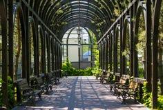 landscaping сада путь сада Красивейшая задняя часть Стоковые Изображения