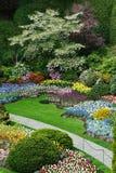 landscaping сада Стоковое фото RF