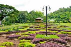 landscaping сада Стоковая Фотография