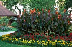 landscaping цветка Стоковые Фотографии RF