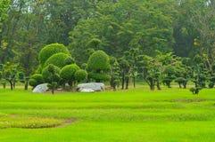 landscaping imagen de archivo