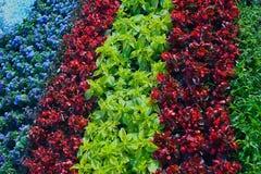Landscaping background Stock Image