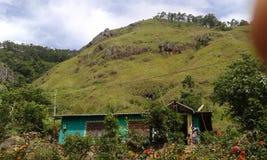 Landscaping in Balagala Ella Royalty Free Stock Photo