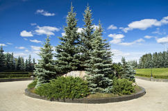 Landscaping of the city Park Stock Photography