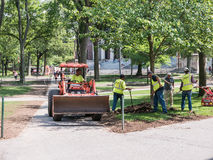 Landscaping crew in Harvard Yard, Cambridge, MA. Cambridge, MA, June 12, 2015: Landscaping crew spreads bark dust and replants lawn after commencement week in Royalty Free Stock Photography