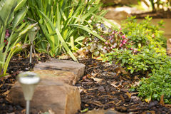 Landscaping. Design in a garden with rocks, solar lights and plants Stock Photos