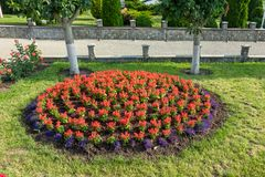Landscaping flower beds stock photo