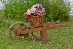 Landscaping, Flowers in Wheel Barrow Planter Stock Photos