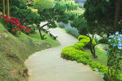 Landscaping in the garden. The path in the garden Stock Image