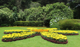 Landscaping garden flowers with trimmed trees Stock Image