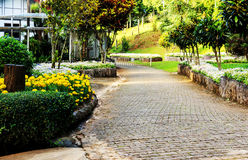 Landscaping in the garden Royalty Free Stock Photos