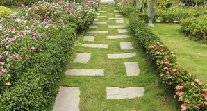 Landscaping in the garden. Royalty Free Stock Images