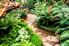 Landscaping in the garden. The path in the garden asian style Royalty Free Stock Photography