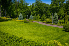 Landscaping in the garden. The path in the garden.Beautiful back. Yard landscape design,Some flowers and nicely trimmed bushes on the leveled front yard Royalty Free Stock Photo