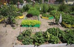 Landscaping on a garden plot. Design on a garden plot Royalty Free Stock Images