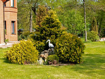 Landscaping with a heron figure Stock Photography