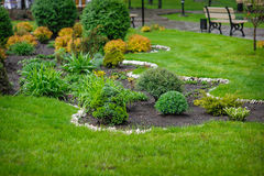 Free Landscaping In The Garden Stock Photo - 49698960