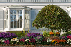 Landscaping near bay window. Autumn flower gardening and landscaping beside a house with a large bay window royalty free stock photos