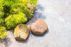 Landscaping with rocks Royalty Free Stock Images