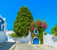 The landscaping in Sidi Bou Said Stock Images