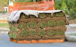 Landscaping Sod or Grass on Pallet. A pile of sod or turf on a pallet will be used for landscaping stock photography