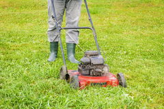 Landscaping worker pushing lawnmower on lawn Stock Photo