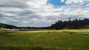 Landscapr des Bauernhofes neben der Eisenbahn Lizenzfreies Stockbild