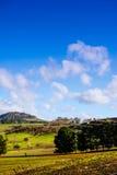 Landscapre de Tasmânia Fotografia de Stock