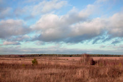 Landscepe in Russia Royalty Free Stock Images