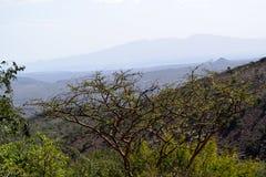 landschaft stockbild