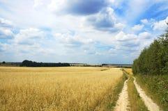 Landschaft Lizenzfreie Stockfotografie