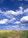 Landschaft Stockfotos